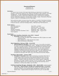 Best Buy Resume Examples Best Creative Resume Templates Best Resume Examples