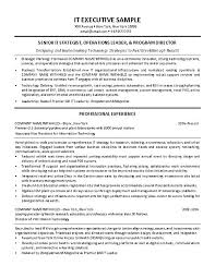 Technology Lead Resume Information System Manager Resume Systems It