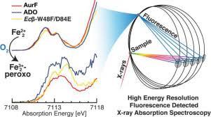 <b>High</b>-resolution <b>iron</b> X-ray <b>absorption</b> spectroscopic and ...