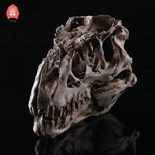 <b>Creative Resin</b> Tyrannosaurus Skull Skeleton Head Figurine ...