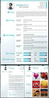 Professional Resume Template 2013 Delectable Best Professional Resume Template Free Cover Latter Portfolio Word