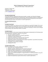 Sample Budget Plan For Non Profit Pdf Strategic Marketing Management For Nonprofit Organizations