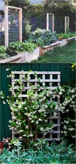 a free standing wood or metal garden trellis planter is an effective way to create a screen or dress up a blank wall source 12 13
