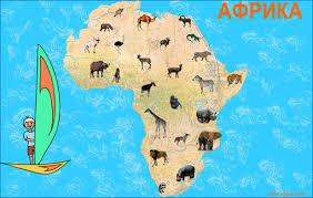 Реферат На Тему Африка