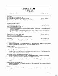 Unique Management Consultant Resume Template Embellishment