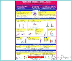 Aero Pilates Exercise Wall Chart Aeropilates Wall Chart Achievelive Co