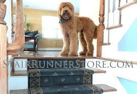 stair rug runner hardware hall runners the 4 stairs runner carpet