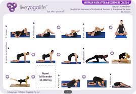 vinyasa hatha beginners cl 6