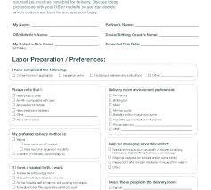 Sample Natural Birth Plan Birth Plan Example Samples In Word Baby Template Natural