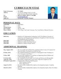 Curriculum Vitae Example Magnificent Professional Curriculum Vitae Writing Website Cv Format