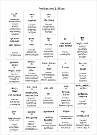 extra ii liberty memorial middle school vocabulary list prefixes life science behavior