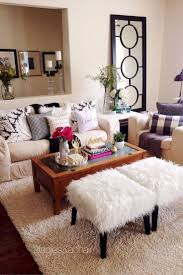 Apartment Living Room Decorating Ideas On A Budget best 25 young couple apartment ideas dope meaning 8357 by uwakikaiketsu.us