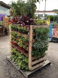 the vertical pallet garden pgi4