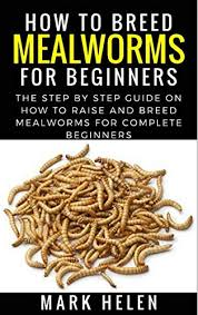 Mealworm Size Chart How To Breed Mealworms For Beginners The Step By Step Guide