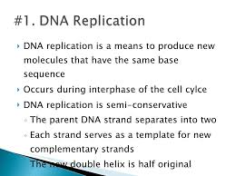 Dna Replication Definition Dna Replication Powerpoint