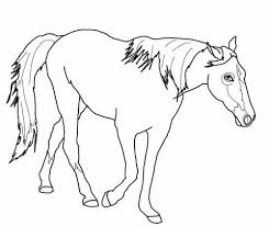 Tennessee Walking Horse Coloring Page Free Printable Coloring Pages