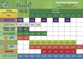 Terpinator Feed Chart Amazon Com Dutchpro Explode Liquid Plant Nutrients End