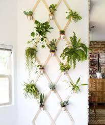 indoor gardening. Indoor Trellis Gardening