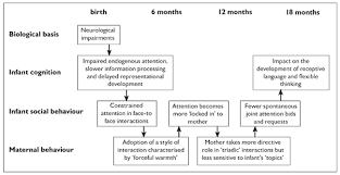 cognitive and social factors in the development of infants figure 1 showing a transactional account of the development of infants down syndrome