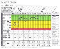 Peak Flow Chart Excel Bedowntowndaytona Com