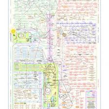 Metabolic Pathways Poster Reljgr3rmwl1