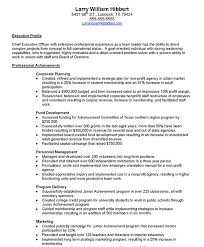 Non Profit Executive Free Resume Samples Blue Sky Resumes