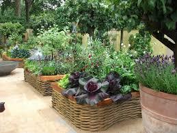 Kitchen Garden Vegetables Modern Vegetable Garden Google Search Kitchen Gardens