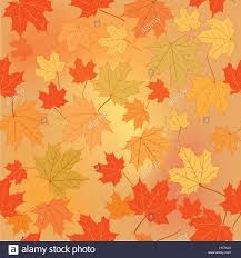 Fall Leaf Pattern Unique Fall Leaf Nature Autumn Leaves Background Season Floral Pattern