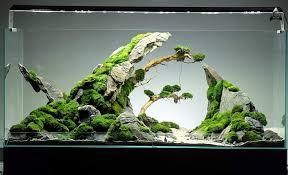 Nano Aquarium Design By Ancient Stone Aquarium Landscape Betta Aquarium