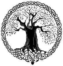 The 12 Common Archetypes