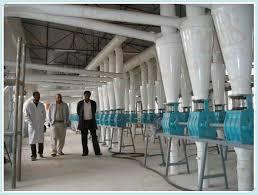 Flour Milling Plant Design Leading Manufactures Of 150t D Flour Milling Plant For