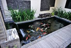 how to make tap water safe for ponds