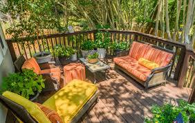 low maintenance plants for decks or patios