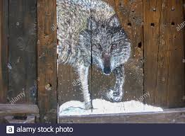 Wolf Picture Art High Resolution Stock Photography and Images - Alamy