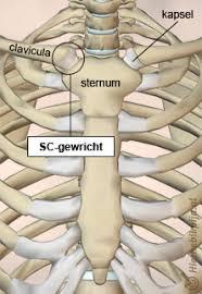 artrose borstbeen