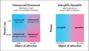 Heterosexual is different from bisexual