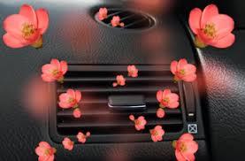 Психология ароматов: 7 лучших запахов для салона автомобиля ...