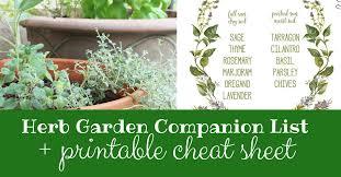 herb garden panion list