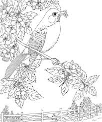 Small Picture 961 best Adult Coloring Pages images on Pinterest Coloring books