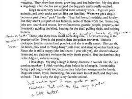 a personal narrative essay assignment five prompts personal a personal narrative essay assignment five prompts