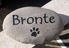our memorial rocks or bronze plaques will last a lifetime and make a perfect addition to your garden or anywhere that you d like to remember your cat dog