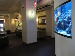 office aquariums. Office Fish Tanks. Tank Tanks . Aquariums L