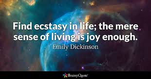 Emily Dickinson Quotes Beauteous Emily Dickinson Quotes BrainyQuote