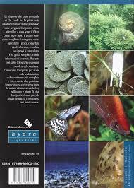 Amazon.it: abc dellacquario dacqua dolce francesco guarnieri