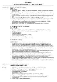 Auditor Resume Sample IT Internal Auditor Resume Samples Velvet Jobs 95