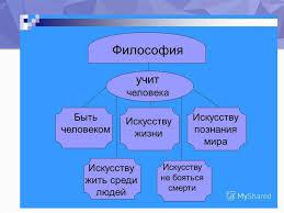 введение в философию презентация онлайн 16