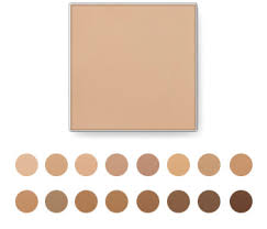 19 Surprising Arbonne Mineral Powder Foundation Color Chart