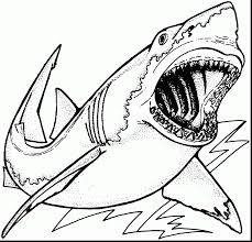 Small Picture Spectacular tiger shark coloring page printable with shark
