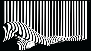 black and white stripe wallpaper stripes on legs wallpapers . black and white  stripe wallpaper ...