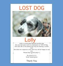 Lost Pet Flyer Maker Classy Found Dog Template Craft Lost Goloveco